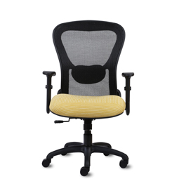 Strata Lite Mid-Back Mesh Chair
