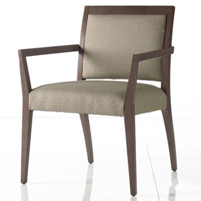 Darren Cosmo Guest Chair